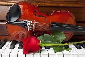 piano violin y rosa